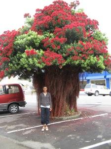 Gisborne, NZ.  Me and the tree Photo (c)2007