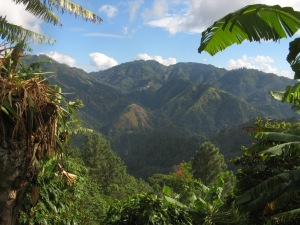 Blue Mountains, Jamaica. Photo by Kimberley (c)2013.