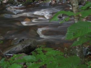 MacIntosh Brook Photo by Kimberley (c)2014