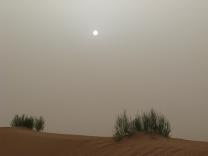 Sand storm Photo by Kimberley (c)2010